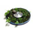 スメルキラーXLシリーズ これも植物採集?して適当なお皿(トレー)にスメルキラーXLをセットしたものです。 カメ君が効いていませんか! インテリアと...